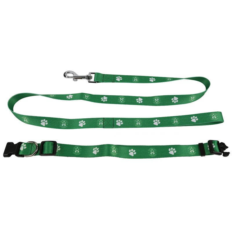 DOG COLLAR AND LEAD