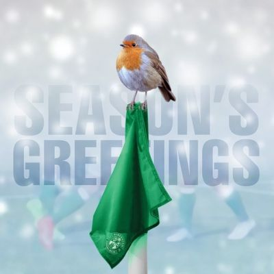 MERRY CHRISTMAS ROBIN CARD image
